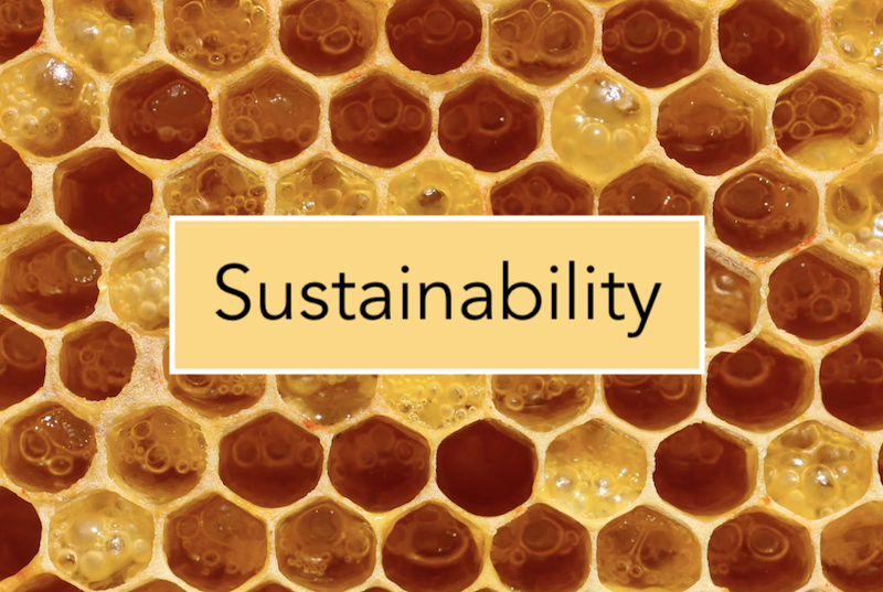 Sustainability project image