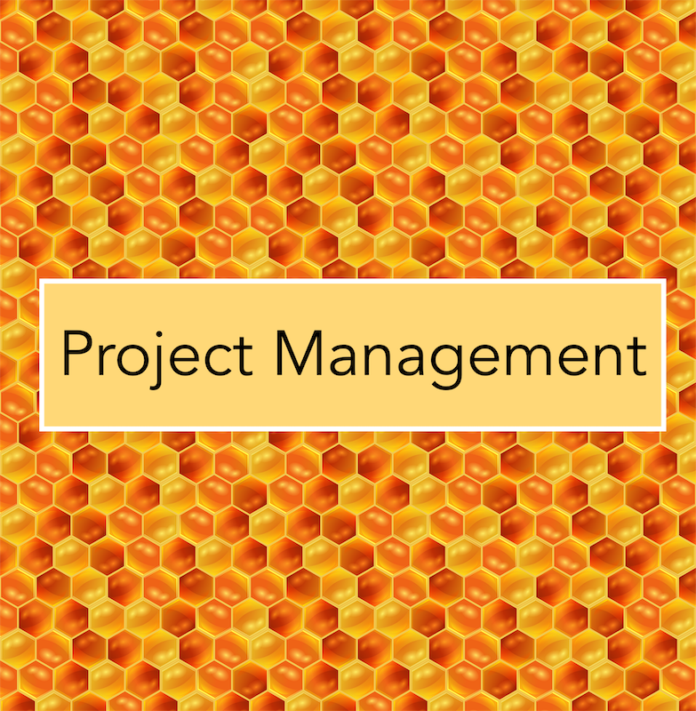 Project management amber honeycomb